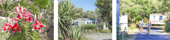 Sale mobile home charente maritime - Purchase mobile home