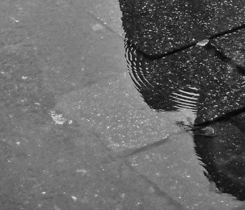 que faire en charente maritime quand il pleut